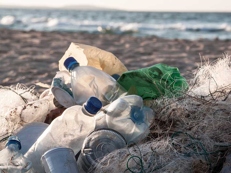 Fighting Single-Use Plastic - One Bottle At A Time